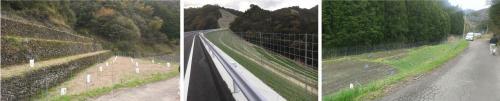 防獣用金網スクリューフェンス用 トンガリ鉄筋 (生地)